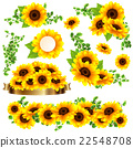 向日葵 花朵 花卉 22548708