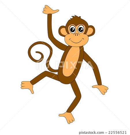 funny monkey on white background 22556521