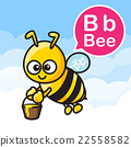 B Bee cartoon color and alphabet for children 22558582