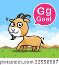 G Goat color cartoon and alphabet for children 22558587