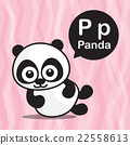 P Panda color cartoon and alphabet for children 22558613