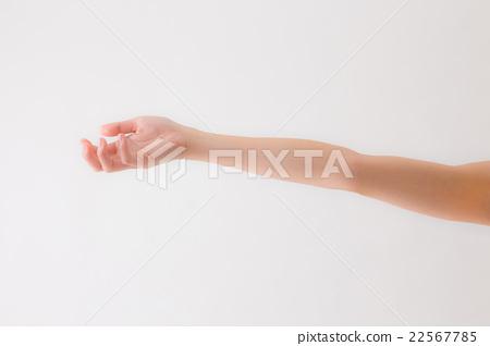 Women's hands 22567785