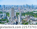 东京都市风景在初夏 22573743