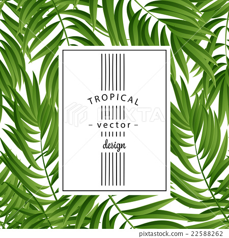 Tropical Palm Leaves Vector Seamless Stock Illustration 22588262 Pixta Discover 75 free tropical leaves png images with transparent backgrounds. https www pixtastock com illustration 22588262