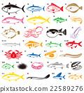 魚 海鮮 海產品 22589276