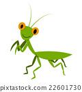 Mantis, Mantodea grasshopper in flat style, vector 22601730