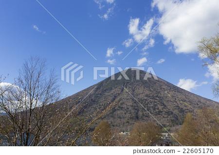 Nikko Masuyama spring 22605170