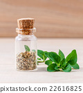 Fresh oregano and oregano dried in a the bottle . 22616825