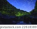 firefly, lightning, bug 22618389