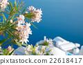 Flowers in Santorini island, Oia, Greece 22618417