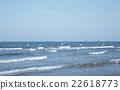 海 海鳥 海景 22618773