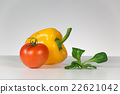 Fresh tomato, pepper and salad 22621042