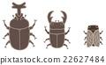 矢量 牙買加犀金龜 鍬形蟲 22627484