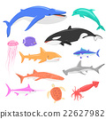Marine Fauna Set of Aquatic Animals 22627982