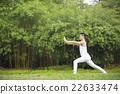 Chinese man doing Tai Chi outdoors. 22633474