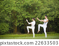 Chinese couple practicing Tai Chi outdoors. 22633503