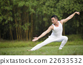 Chinese man doing Tai Chi outdoors. 22633532
