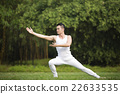 Chinese man doing Tai Chi outdoors. 22633535
