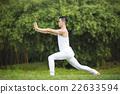 Chinese man doing Tai Chi outdoors. 22633594