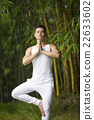 Chinese man doing Tai Chi outdoors. 22633602