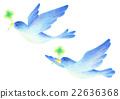 鳥兒 鳥 禽 22636368