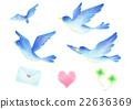 鳥兒 鳥 小鳥 22636369
