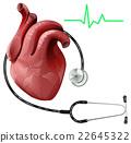 human heart stethoscope 22645322