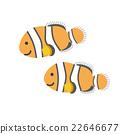 clown, fish, clownfish 22646677