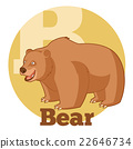 abc, alphabet, animal 22646734