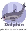 alphabet, animal, dolphin 22646737