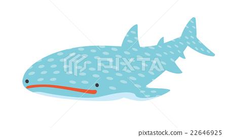 鯨鯊 矢量 魚 22646925