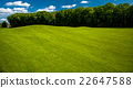 Golf course landscape 22647588