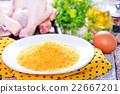 tempura 22667201