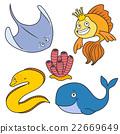 Sea life 22669649