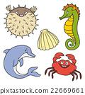 Sea life 22669661