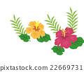 槿 矢量图 植物 22669731