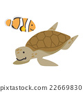 anemone fish, clownfish, sea turtle 22669830