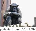 黑猩猩 穴居人 類人猿 22681292