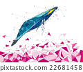 Whale in geometric low polygon style 22681458