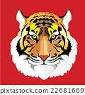 Tiger head vector illustration 22681669