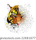 Tiger geometric pattern 22681677