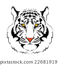 Tiger head vector illustration 22681919