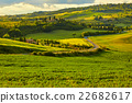 Beautiful view of green fields in Tuscany 22682617