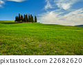Beautiful view of green fields in Tuscany 22682620