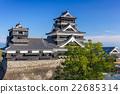 Kumamoto Castle 22685314
