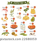 Protein Rich Food Flat Icons Set 22686059