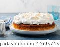 奶油 乳霜 蛋糕 22695745