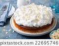 蛋糕 奶油 乳霜 22695746