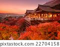 Kiyomizu Temple of Kyoto, Japan 22704158