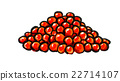 salted salmon roe 22714107